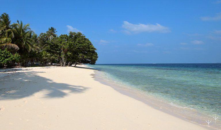 Diving the Maldives on a budget. Baa Atoll, Dharavandhoo, Photo: A. Verdier-Ali