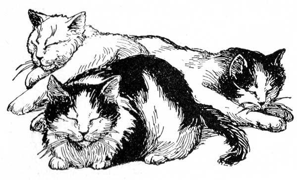 Cat Clipart Karen S Whimsy Cats Illustration Cat Art Cat Clipart