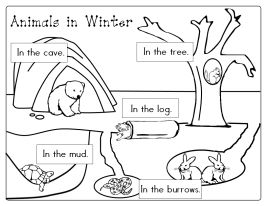 coloring pages of winter animals | Itsy Bitsy Learners: Animals In Winter Printables ...