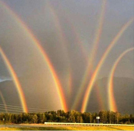 Восемь радуг: Как получить лайки на Фотошопе | Натуральный ...
