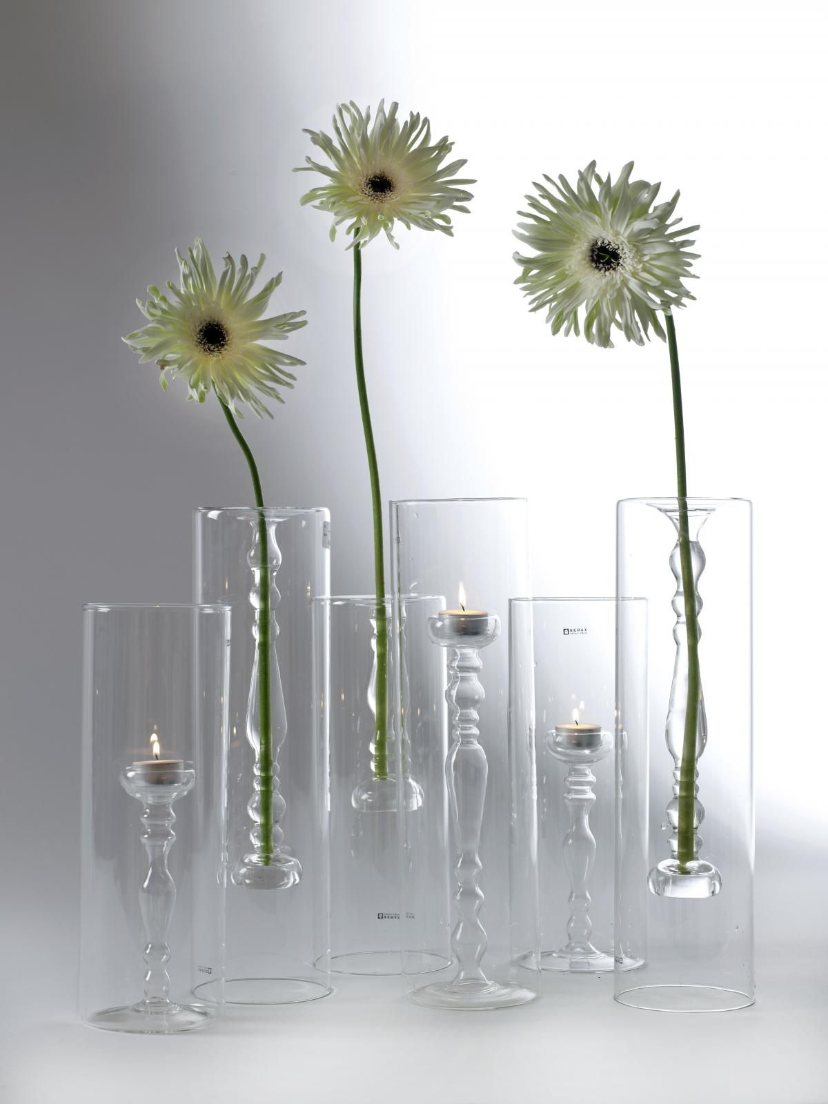 René Barba 系列 │ 圓玻璃花器