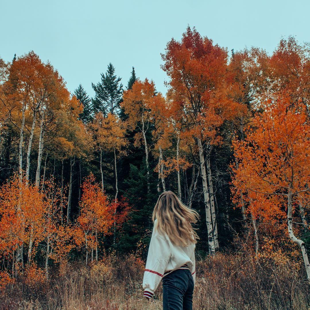 "Sarah Rae ♥️ on Instagram: ""Wonderland"