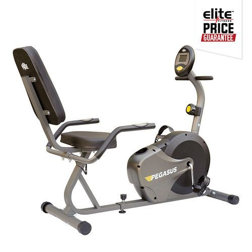 Pegasus Recumbent Exercycle