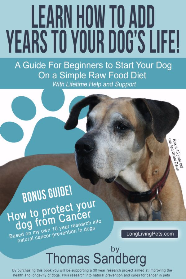 Long Living Pets Research Project Follows 1 000 Raw Fed Dogs Throughout The Life Span To Gather More Resear Raw Feeding For Dogs Raw Food Diet Raw Food Recipes