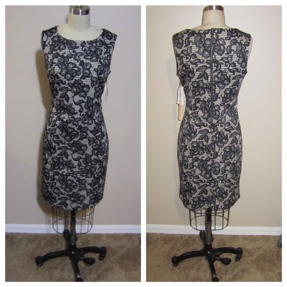 Knit shift dress Classic shift dress with beautiful print and exposed back zipper. NEW WITH TAGS. 95% polyester 5% spandex Gibson Latimer Dresses