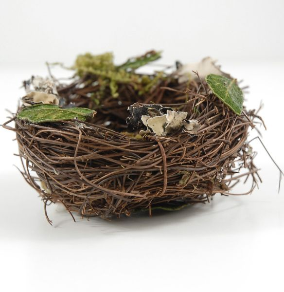 Wonderful Bird Nests With Preserved Moss U0026 Lichen $2.99 Each / 6 For Great Ideas