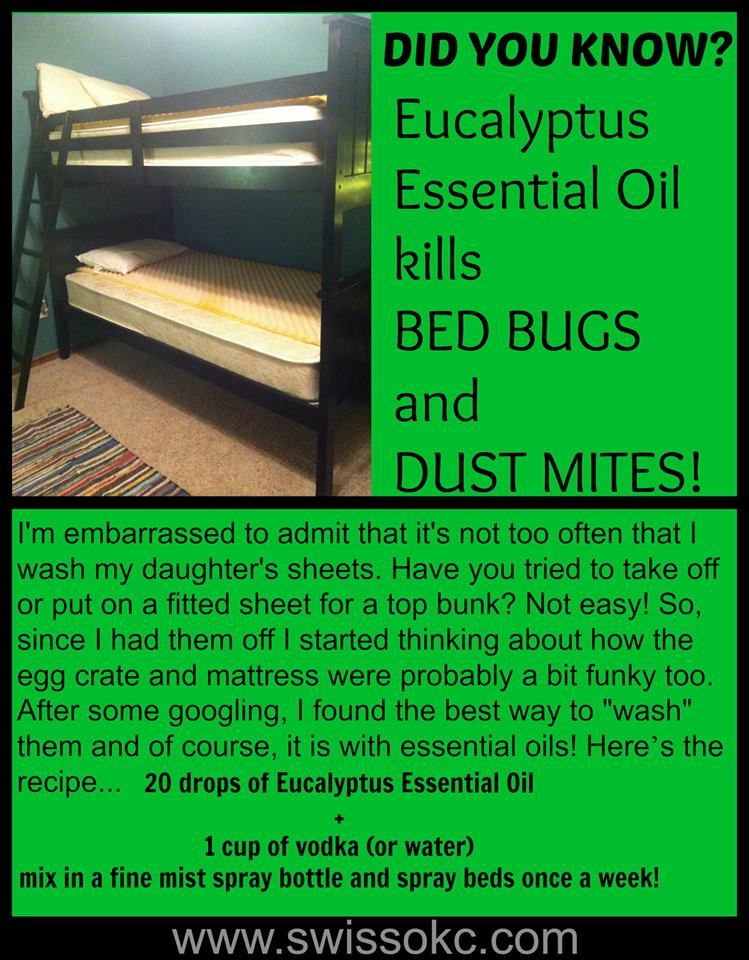 bed bug repellent travel spray - keep bed bugs at bay naturally