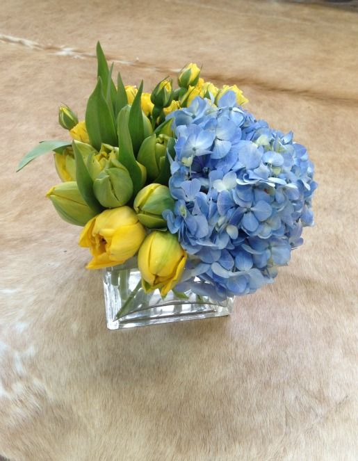 Blue And Yellow Centerpieces Yellow Tulips And Blue Hydrangeas