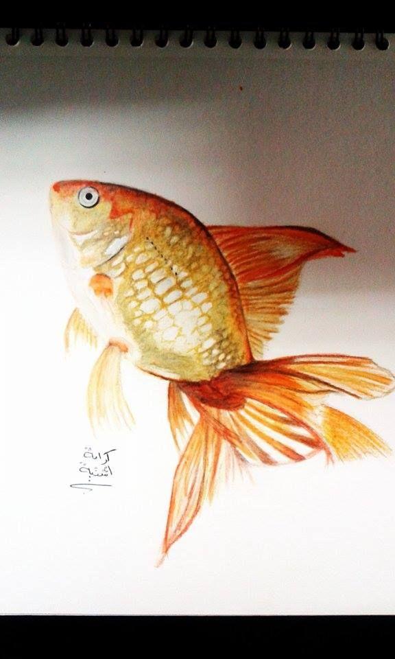 رسم سمكة ذهبية كرامة إشتية Creative Painting Fish Pet Pets