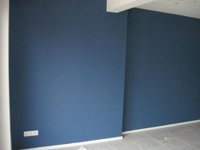 Blauwe muur woonkamer google zoeken nieuw huis - Kleur blauwe verf ...