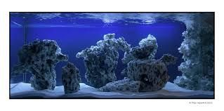 Aquascaping 90 Gallon Reef Tank Google Search Reef Tank Nano Reef Tank Aquascape