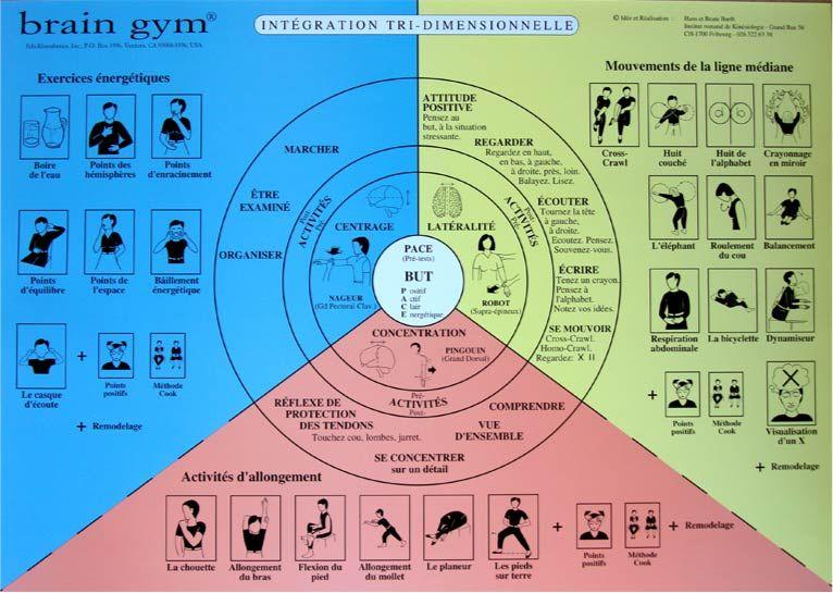 Célèbre brain gym - Google Search   Brain Gym   Pinterest   Brain gym  AC39