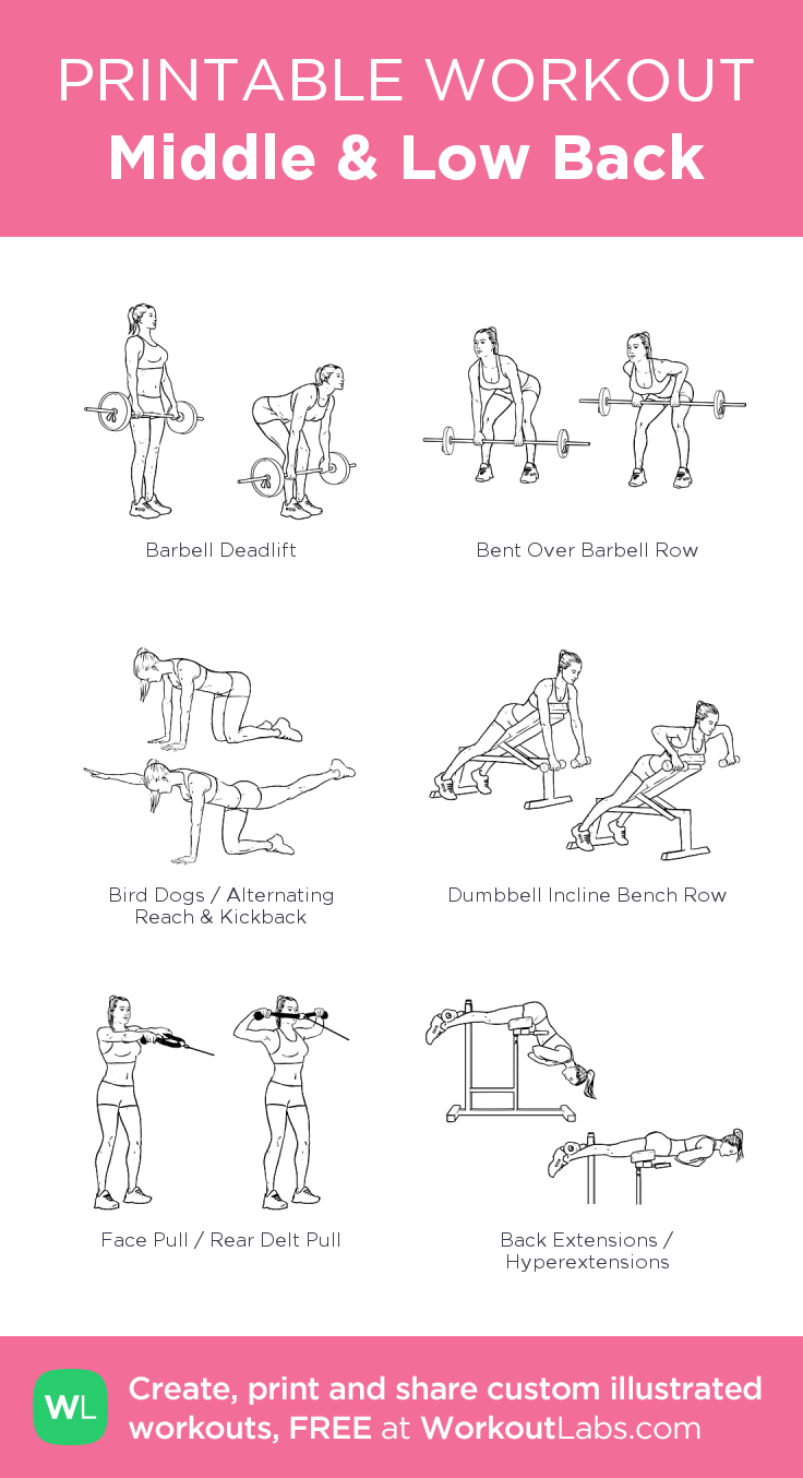 middle low back my visual workout created at workoutlabs com
