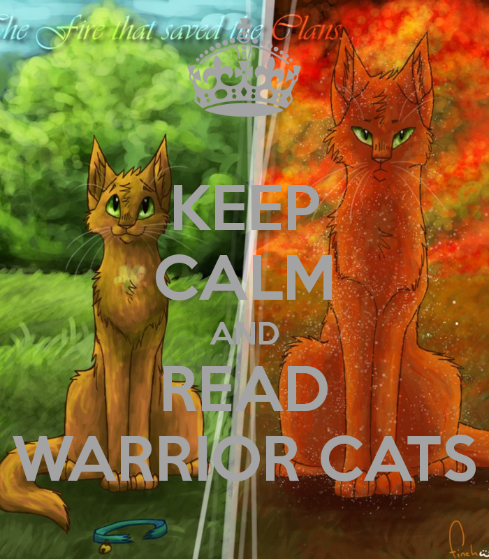 Warriors Erin Hunter Lost Stars: Warriors Cats - Google Search