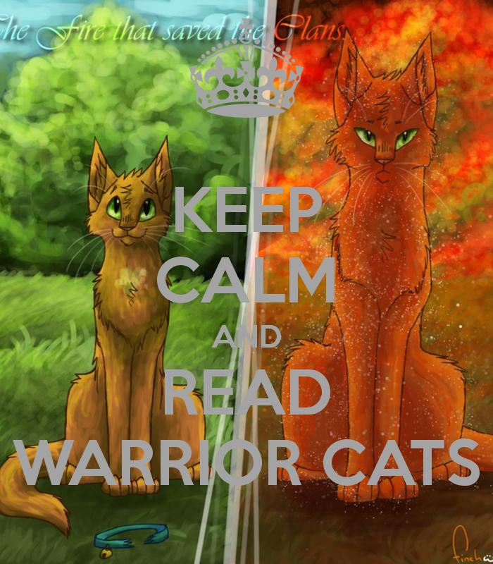 Warriors The Prophecies Begin Book 3: Warrior Cats :3
