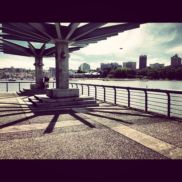 Photo by briepickles1 • Instagram