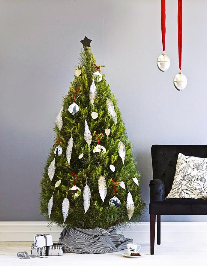 Real Christmas tree care: Tips on your potted christmas ...