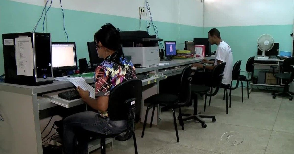 Palmeira dos Índios recebe aplicativo para combate ao Aedes aegypti