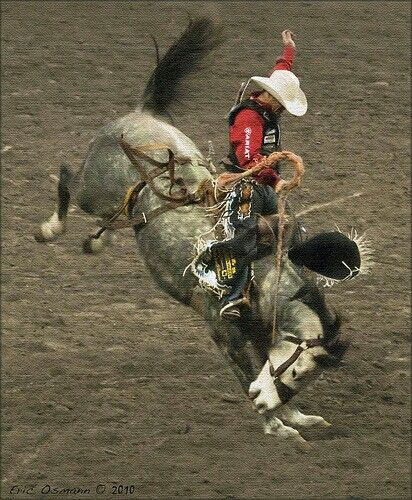 Rodeo Events, Rodeo, Rodeo