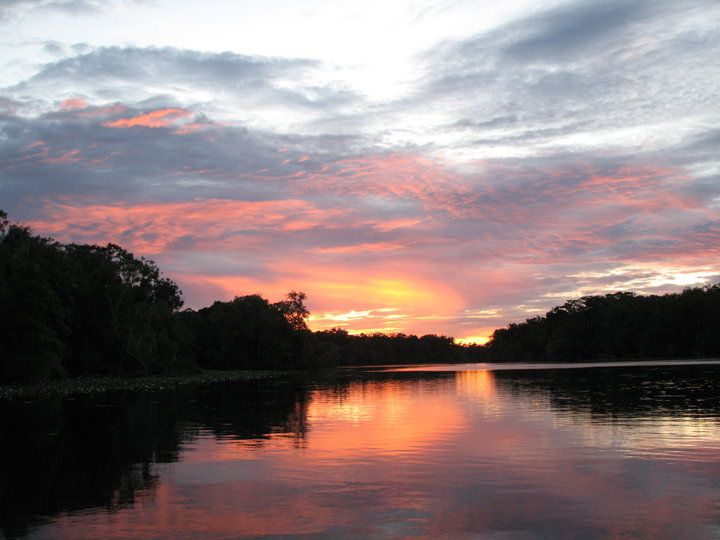 Back waters of the st johns river in central florida www