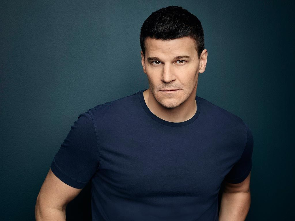 david boreanaz official instagram