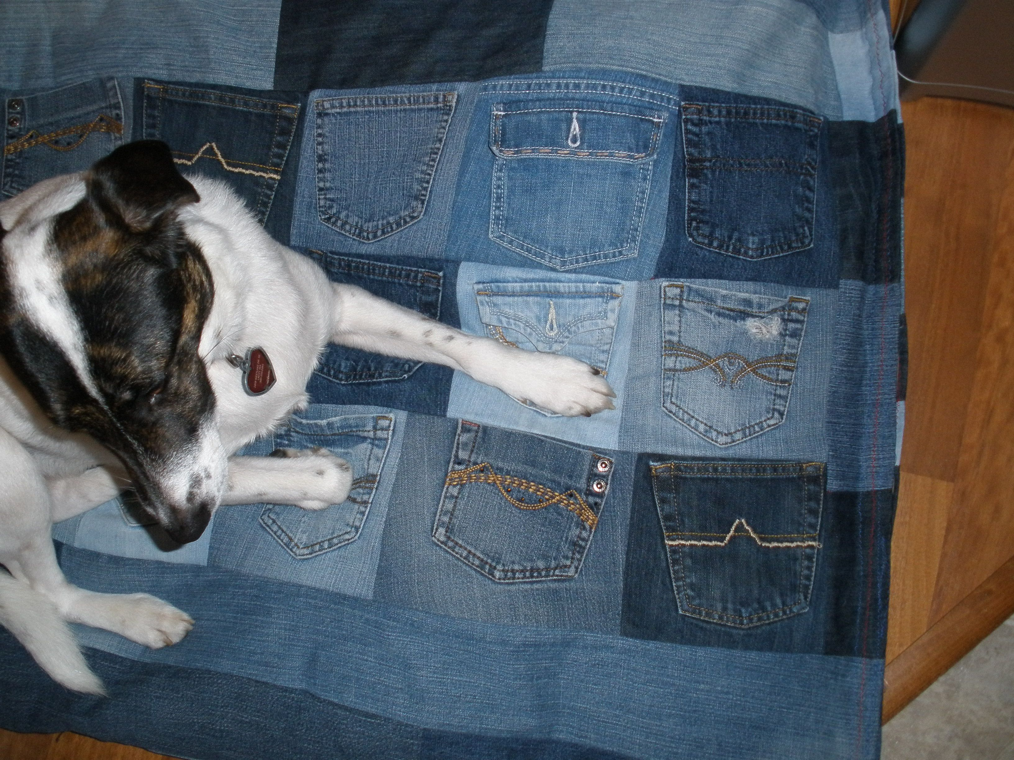 Used My Daughter S Old Jeans To Make A Dog Bed Cover Pockets On One Side And Stitched The Pants Legs To Make The Other Side Covered Dog Bed Old Jeans Dog