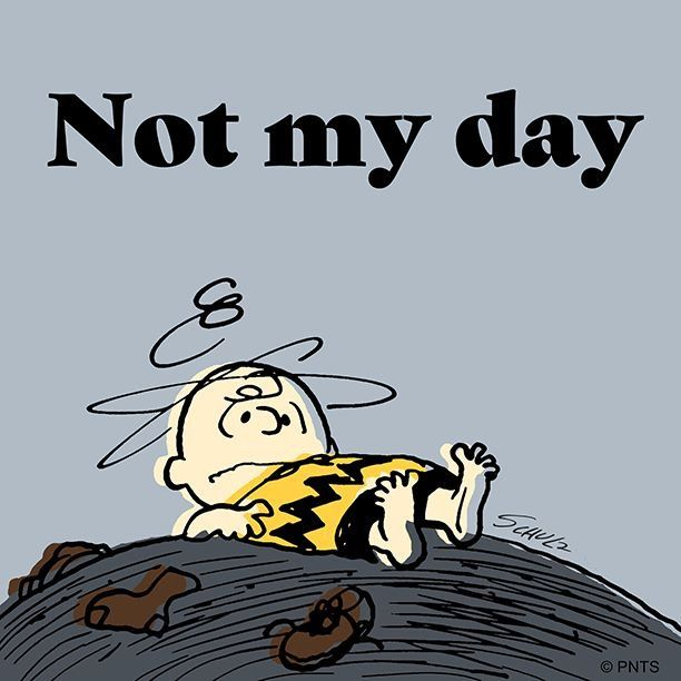 Today Has Not Been My Day Peanuts Snoopy