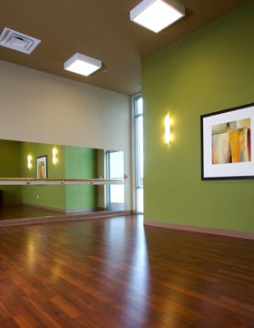 Yoga Room/fitness studio-- ideas for rooms without windows ...