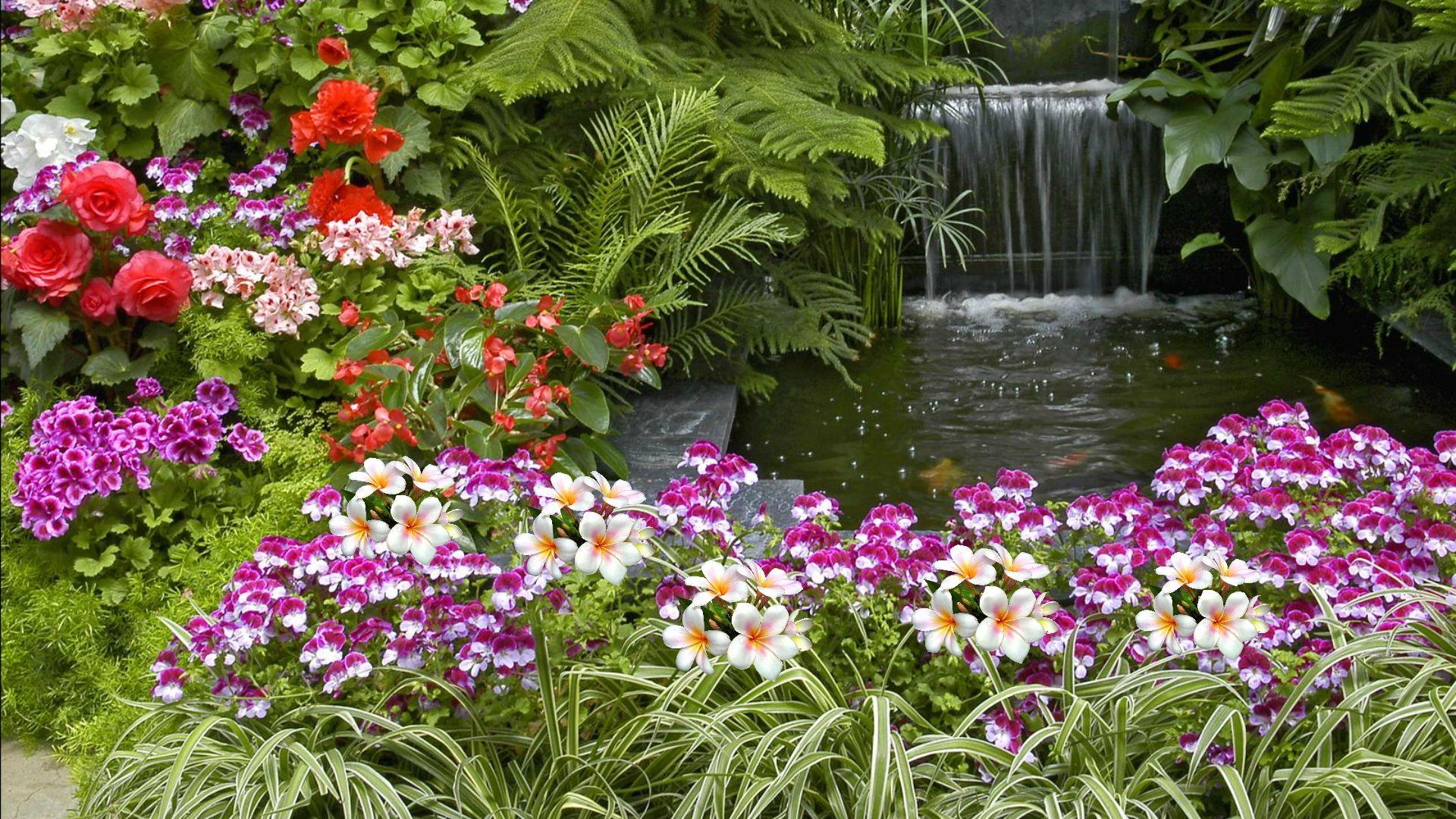 Flower Garden Hd Wallpaper 491318g 19201080 Flowerlandscape
