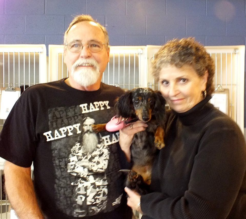 Candy has a new forever home!