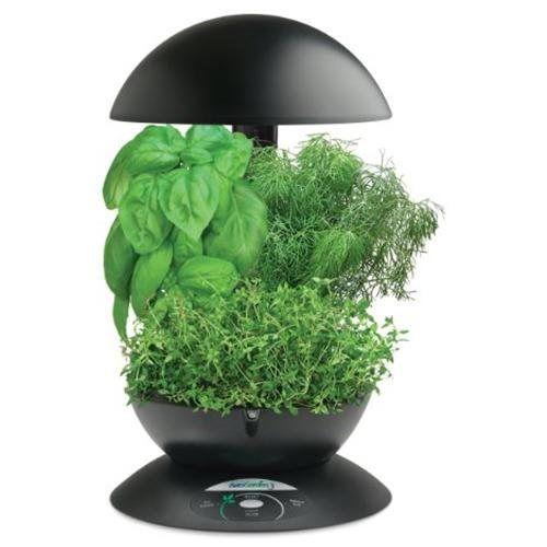 Aerogrow Aerogarden 3 Black W Gourmet Herb Seed Kit 400 x 300