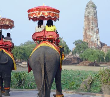 Elephant riding in Thailand. A MUST.