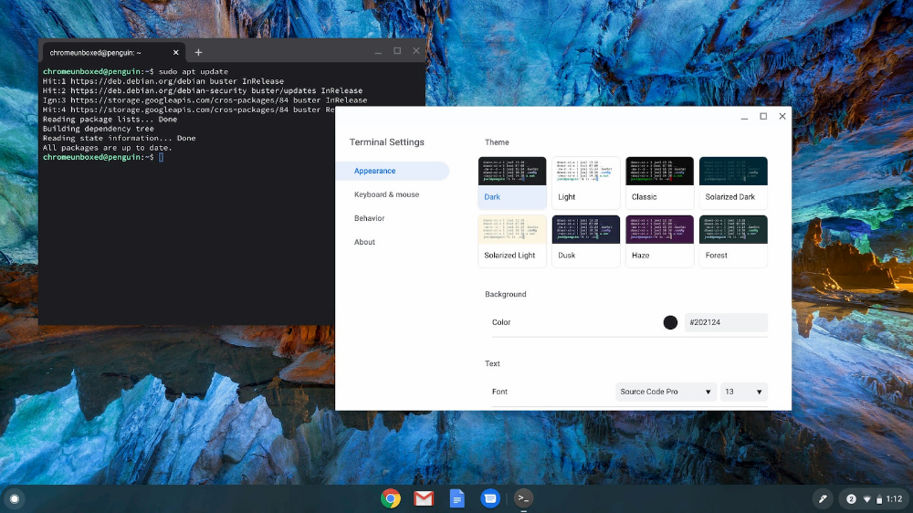 Say Hello To The Linux Terminal 2 0 For Chrome Os In 2020 Say Hello Linux History Lessons,Best Places To Travel