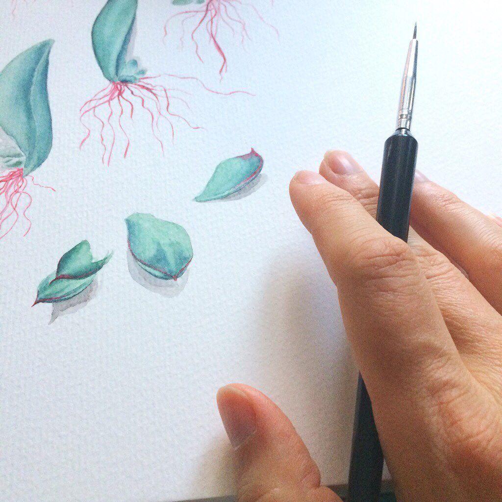Aquarell Sukkulenten Blumenmalen Youdesignme Youdesignme