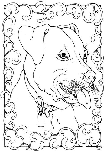 coloring page staffordshire bull terrier img 28207