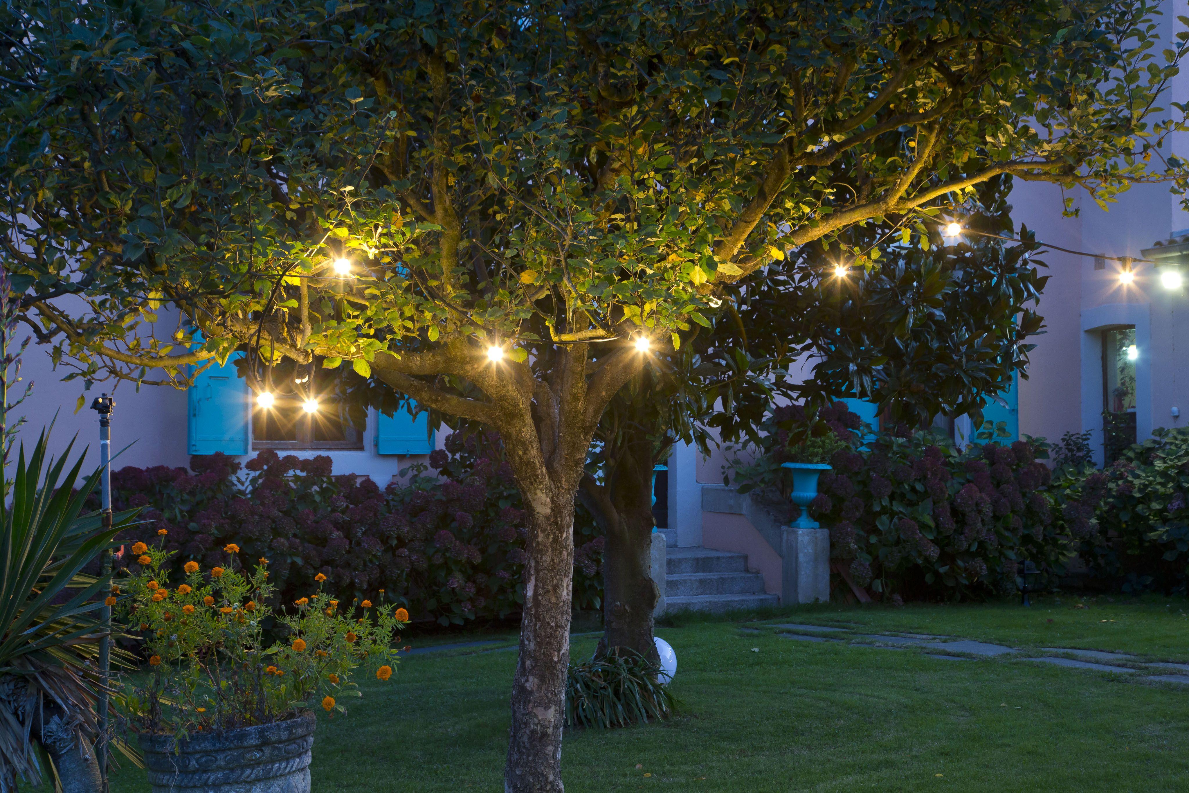 Epingle Par Eclairage Jardin Sur Eclairage Arbres Arbre Eclairage