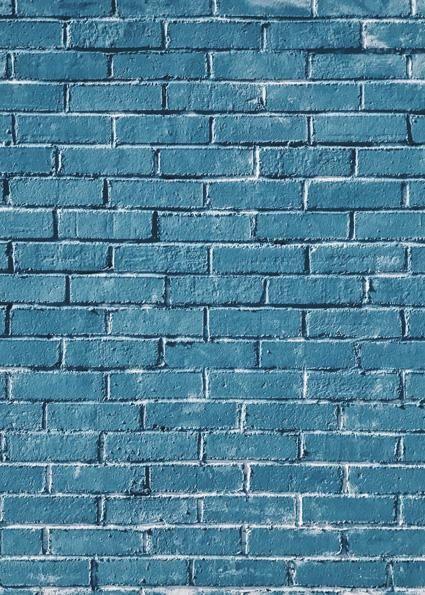 Studio Bricks Backdrop/Floor LR52