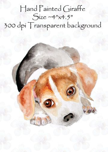 Hand Painted Watercolor Beagle Dog Puppy Clip Art High Resolution