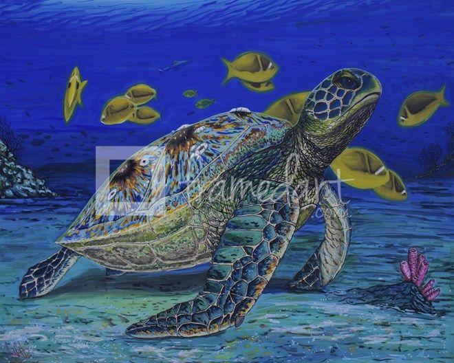 Framed Turtle Tale Art by Martin Nasim at FramedArt.com