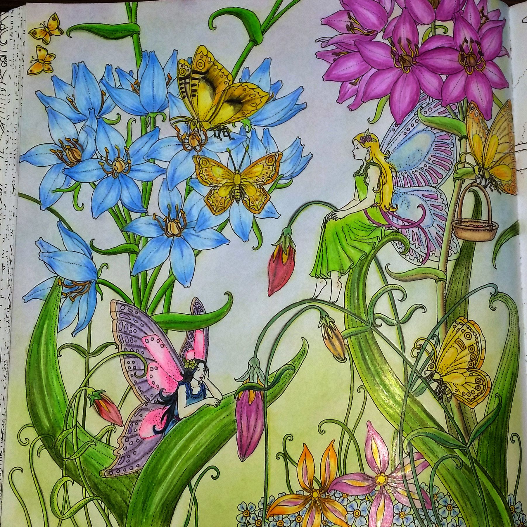 Coloring Book Zemlja Snova By Tomislav Tomic I Used Faber Castell