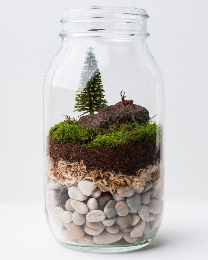 1001 Modeles De Terrarium Plante En Bocal Ferme Ou Ouvert