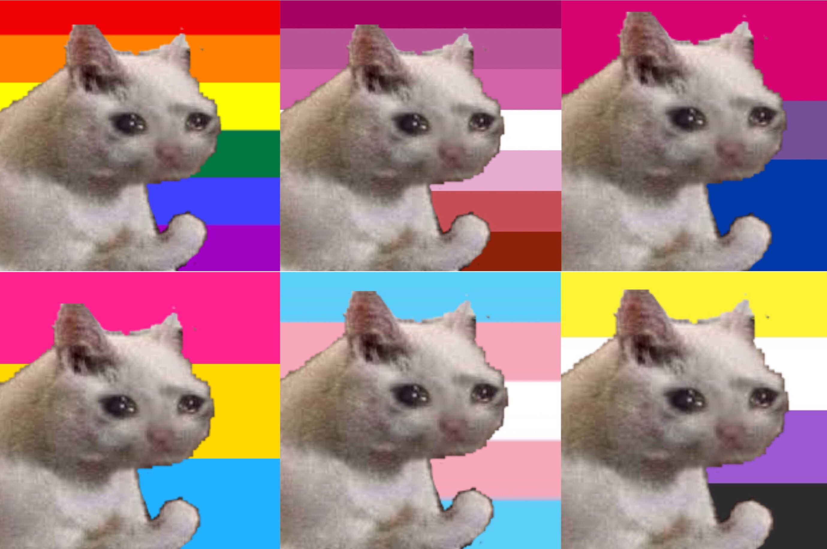 crying cat pride profile pics! feel free to use Pics