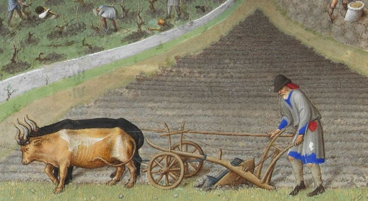 The Farmers Of The Middle Ages In 2020 Farming Technology Medieval History Types Of Farming