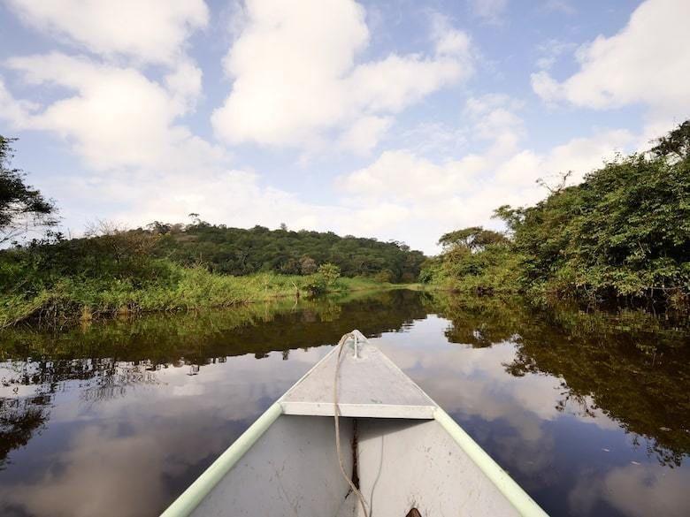 Voyage En Guyane Conseils Pratiques Et Incontournables A Decouvrir Voyage Conseils Pratiques Partir En Voyage