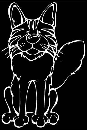 Somali Decal Somali Cat Pinterest Somali And Cat - Vinyl decal cat pinterest