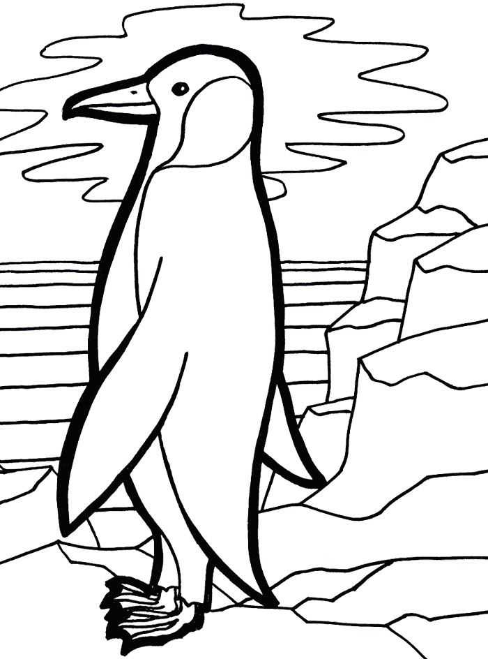 Cute Emperor Penguin Coloring Page Penguin Coloring Pages