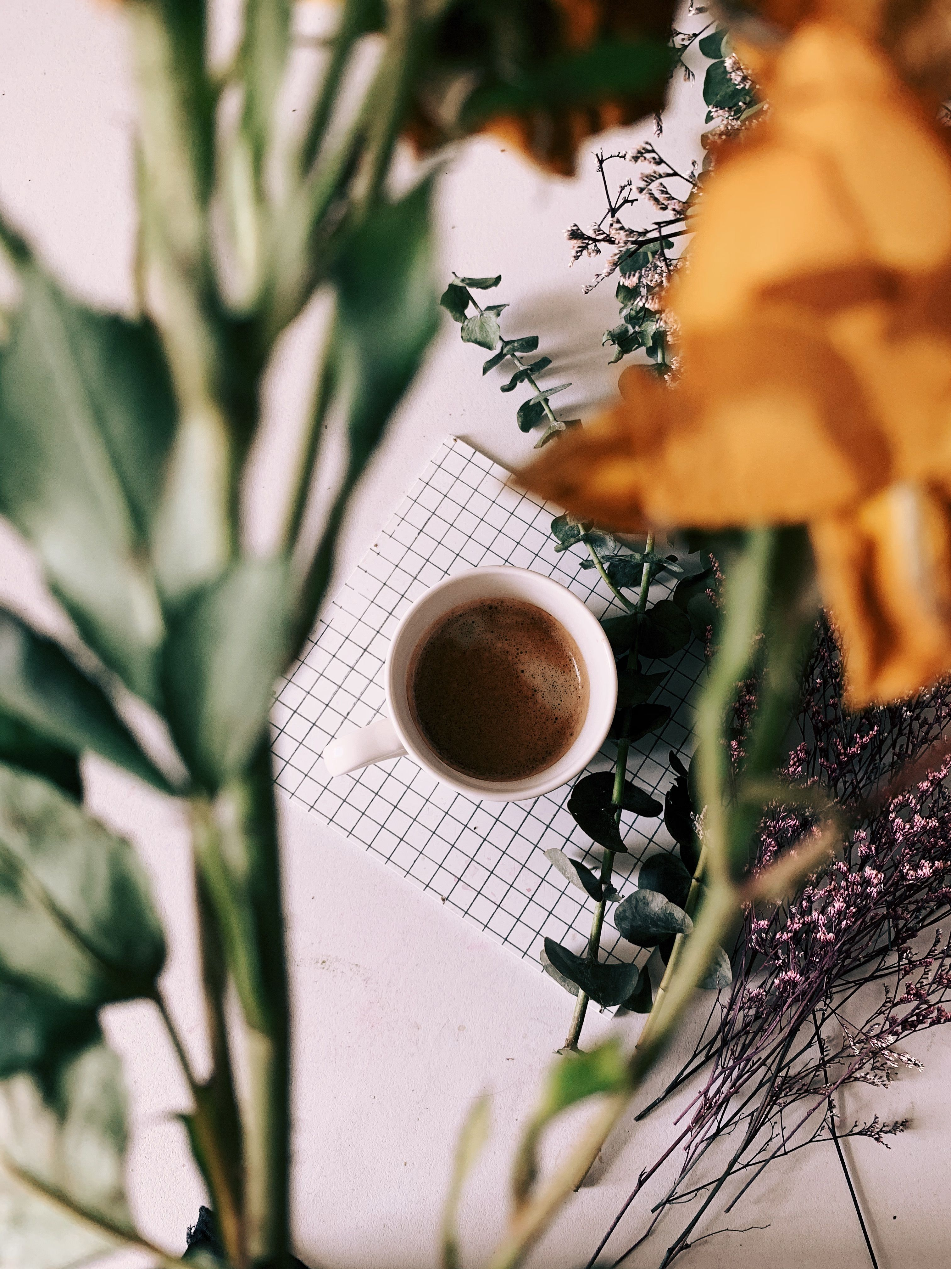 Coffee Photography Photo Background