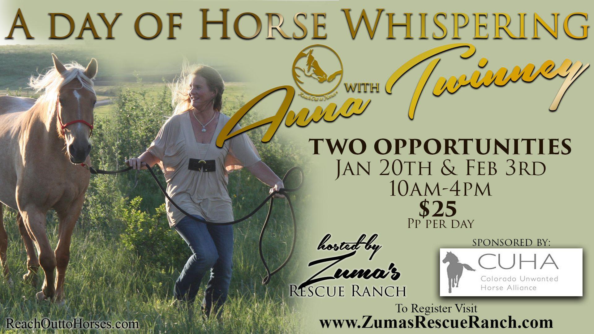 Anna Twinney Clinic February 3rd Clinic, Horse trainer