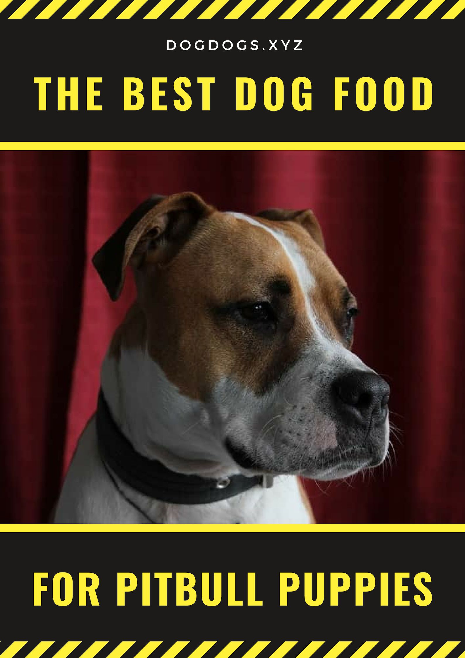 The Best Dog Food For Pitbull Puppies Stuff To Buy Best Dog