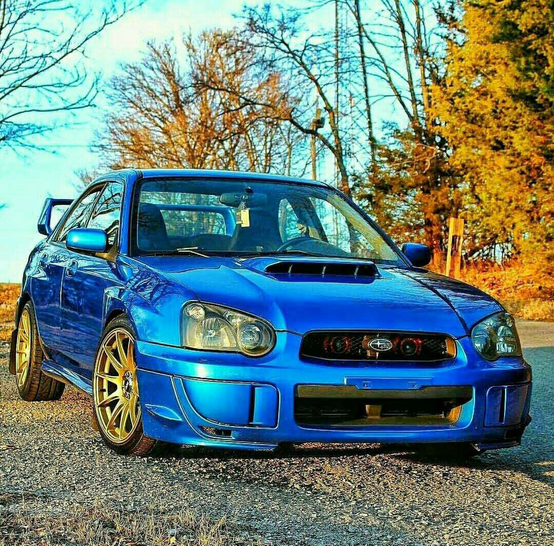 Blue And Gold. Can't Beat That On A Subie 👌. #Subaru